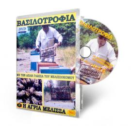 Queen Bee Breeding  Νο1 – DVD  - AVAILABLE ONLY IN GREEK LANGUAGE